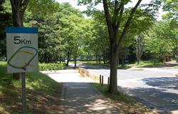 筑波大学体育会合気道部OB会 合気道 ( 武道 | 道場 | 稽古 | 黒帯 )